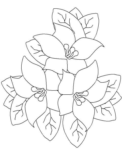 desenhos de flores